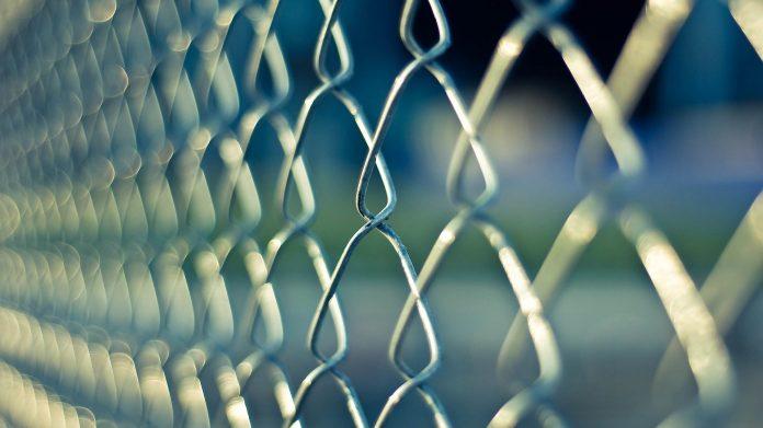 Gard din plasa