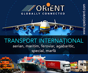 transport international